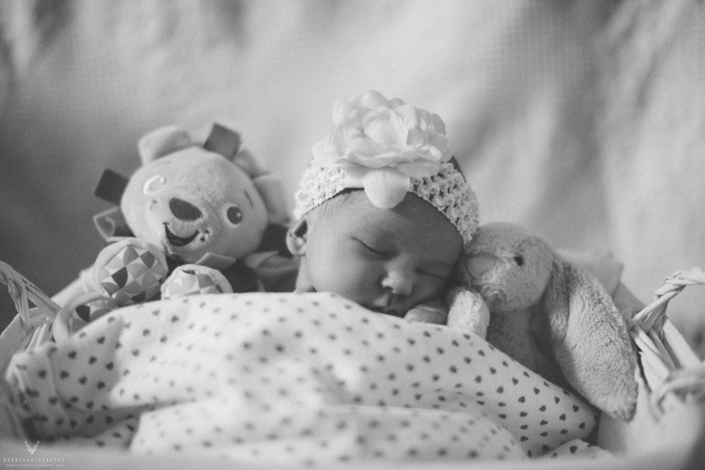 Vernon Baby Photographer 011